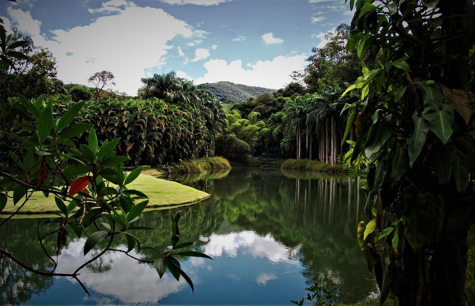 Profiter d'un voyage sur mesure au Brésil pour visiter des sites naturels